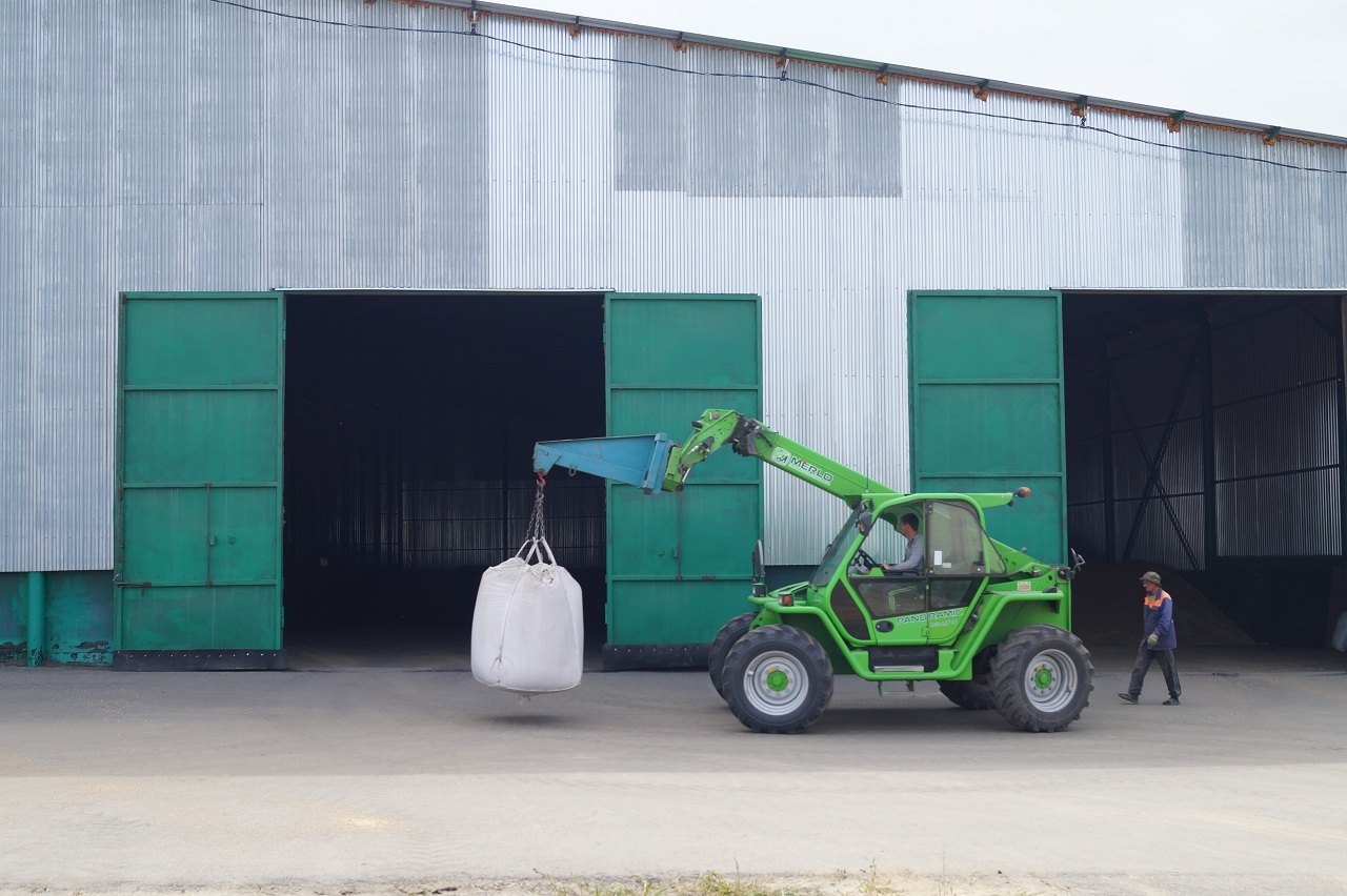 купить семена вики яровой в липецкой области